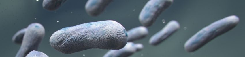 Bacterial vs. Viral Infection: The Key Differences